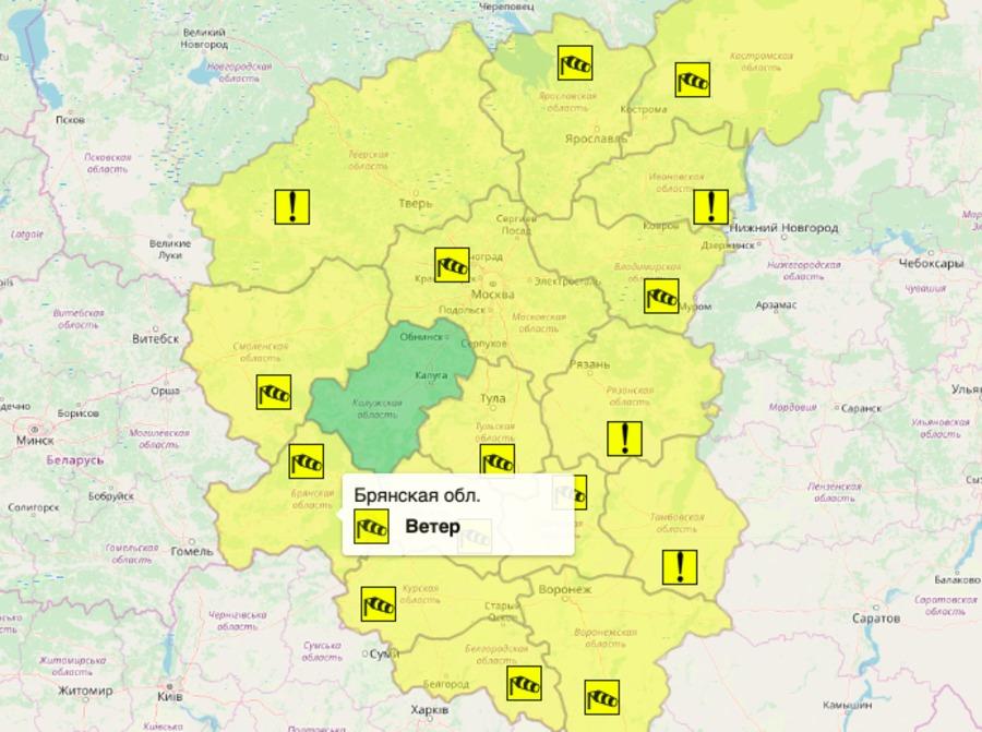 На Брянщине из-за ветра объявили «желтый» уровень опасности