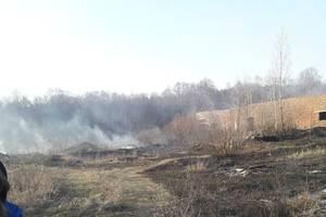 В Брянске неизвестные подожгли сухую траву недалеко от улицы Ново-Советской