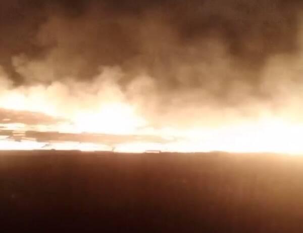 Под Брянском сняли на видео масштабный пожар в поле
