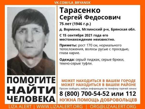 В Брянской области ищут пропавшего 75-летнего Сергея Тарасенко