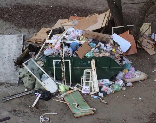 В Брянске сняли на фото стихийную свалку на улице Фосфоритной