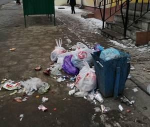 В Брянске сфотографировали свалку возле остановки «Восход»