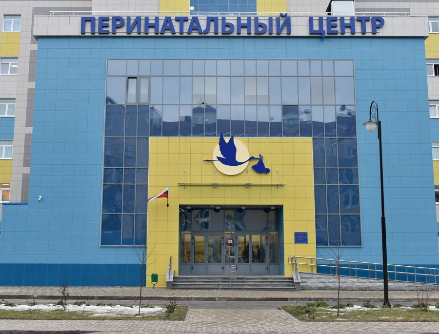 Дело о смерти 11 детей в Брянском перинатальном центре продлили до осени