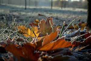 На Брянщине во вторник похолодает до 4 градусов мороза