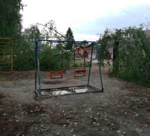 В Брянске сильный ветер повалил дерево на детскую площадку